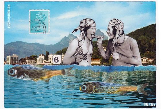 Miss Herzfrischs 365 Postkartengrüße - Picknick am See