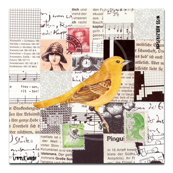 missherzfrischs_collage_littlebirdy