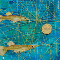 Miss Herzfrischs Collage Stopfgarn Mustereien Fische