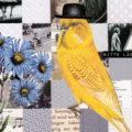 missherzfrischs_vogelmuster-bitte-laecheln