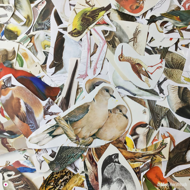 Miss Herzfrischs Vintage Collage Pack * Vögel